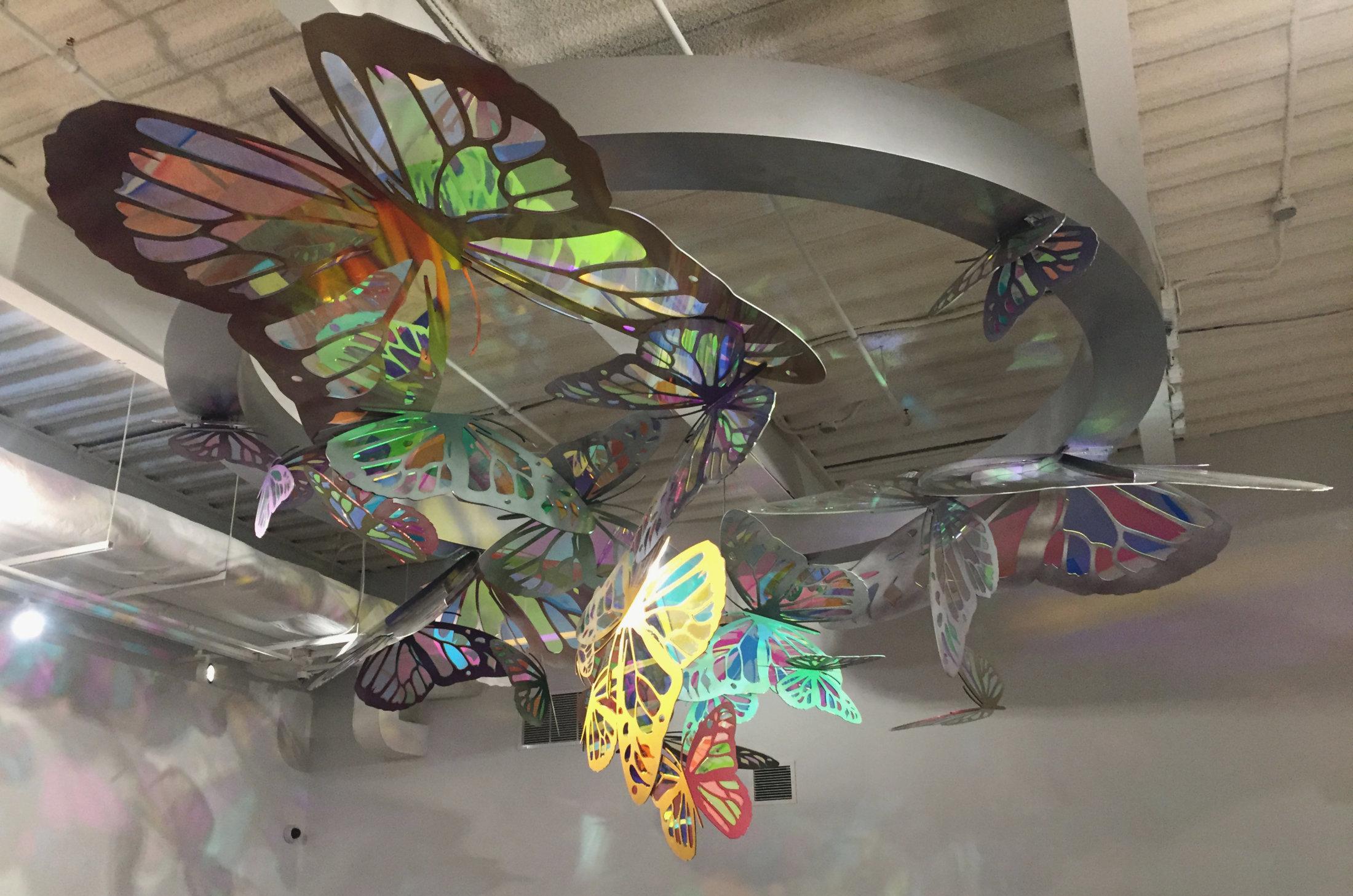 Butterfly, 2019